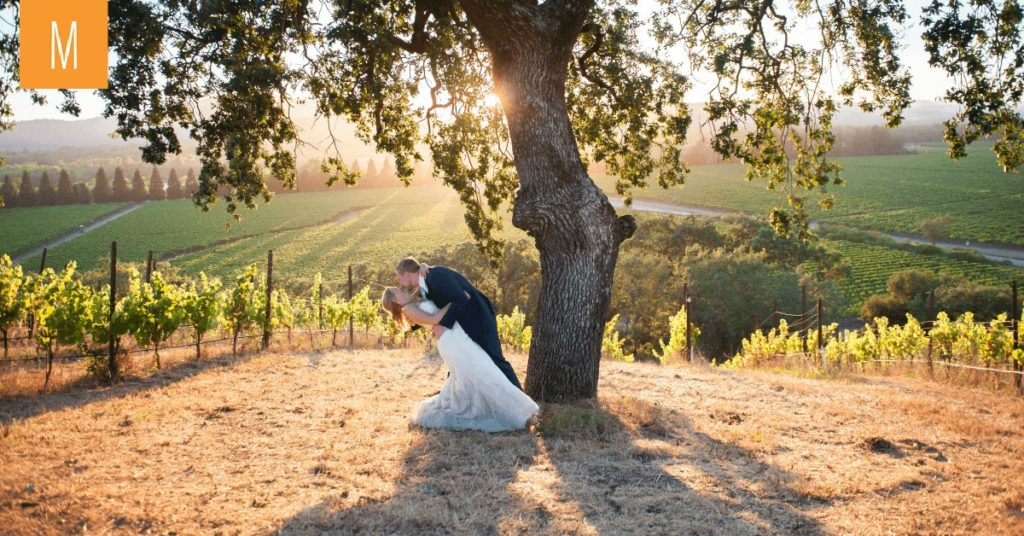 A groom dipping his beautiful bride at Copain Wines. A beautiful view of Russian River valley in the background.