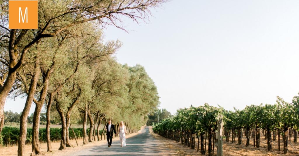 Wedding budgets: Where to focus your dollars