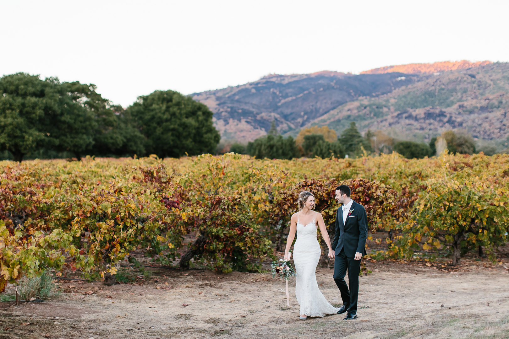 What Season in Wine Country is Right for you?