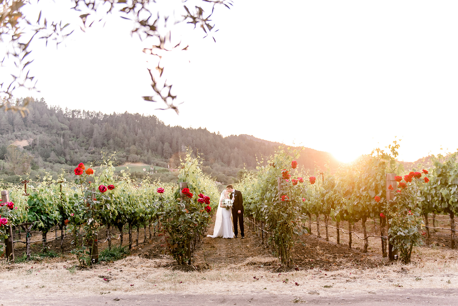 Not to Be Missed Photos at Your Vineyard Wedding Venue