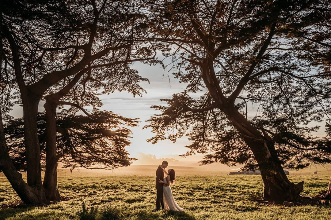 Stemple Creek, Ranch, Tomales, Marin County, Ranch Weddings