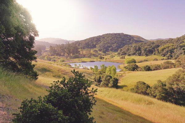 Hawkwood Hills